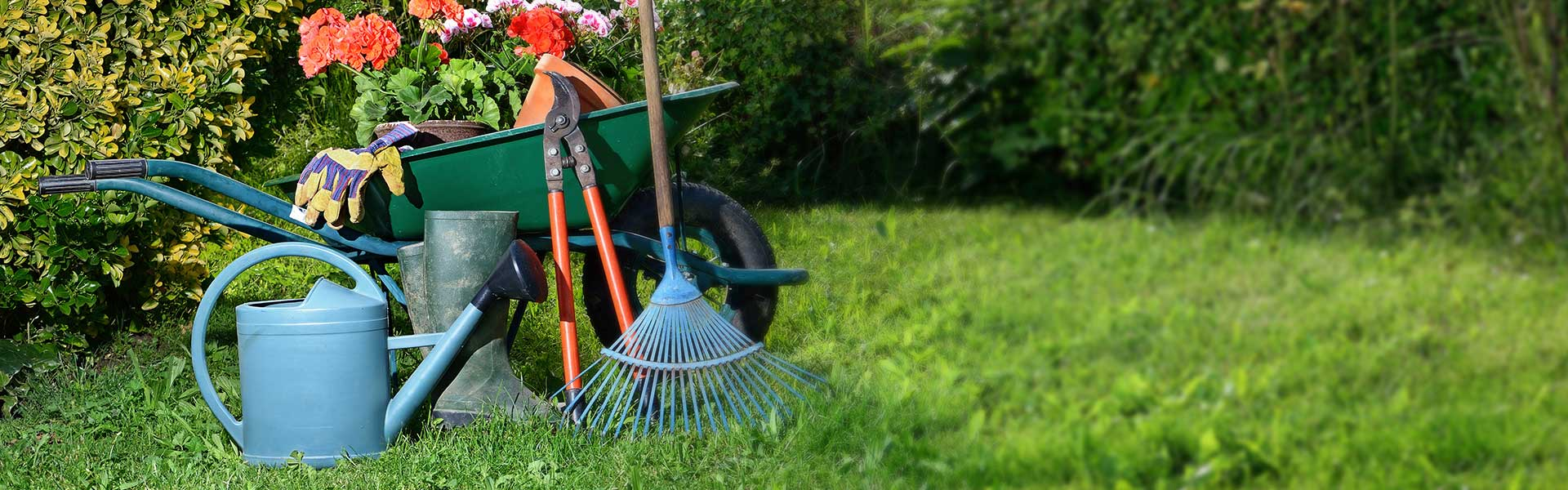 Friendly gardeners and top - quality gardening services!